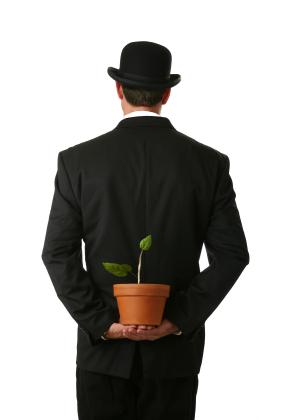 Is an SEO Company a Valid Idea Anymore